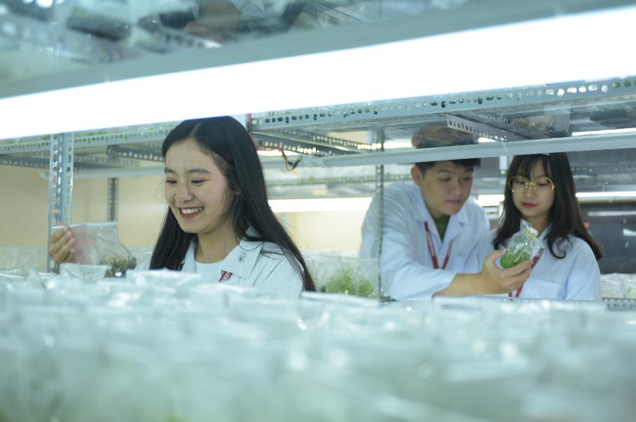 Ngành Công nghệ sinh học Trường Đại học Yersin Đà Lạt