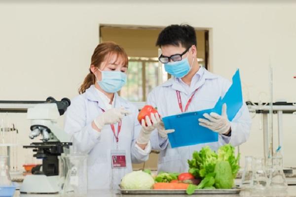 Sinh viên ngành Công nghệ thực phẩm trường Đại học Yersin Đà Lạt thực hành trong phòng thí nghiệm của trường
