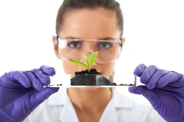 Cơ hội nghề nghiệp ngành Khoa học môi trường