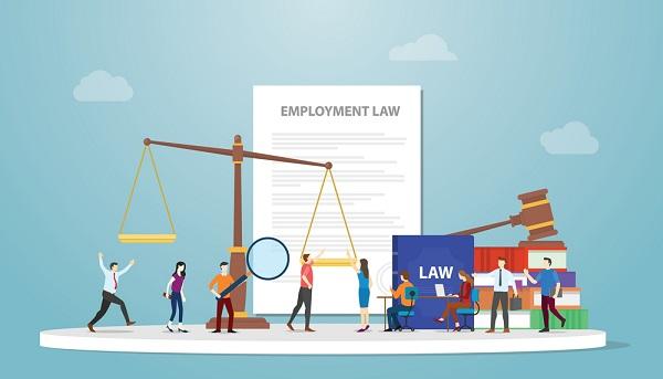 Chọn ngành Luật kinh tế - Sinh viên sẽ được đào tạo những gì?